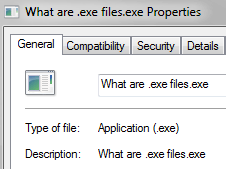 What are .exe files?